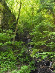 Полонсько-Кузійський водоспад (Кузій)